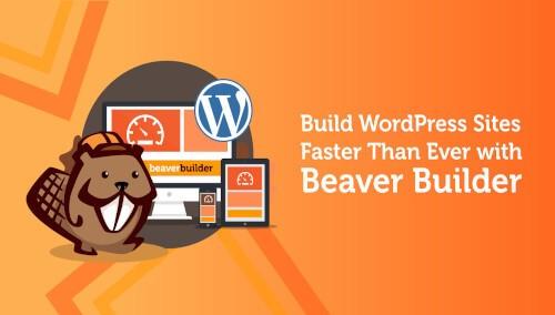 beaver-builder-plugins